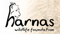 Logo Harnas wildlife foundation